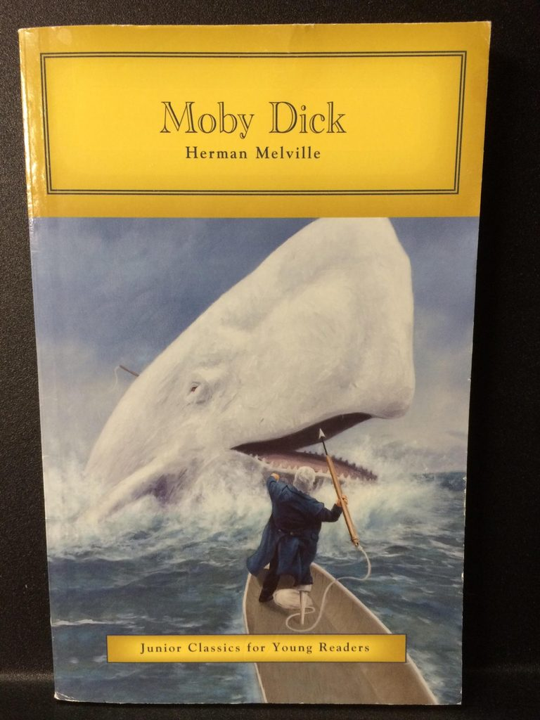 a review of moby dick by herman melville